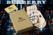 人気商品 2015 BURBERRY バーバリー iPhone6/6s 専用携帯ケース 6色可選